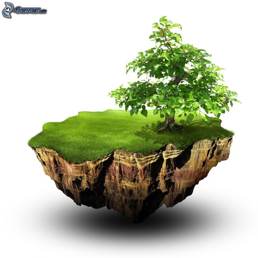 träd, flygande ö