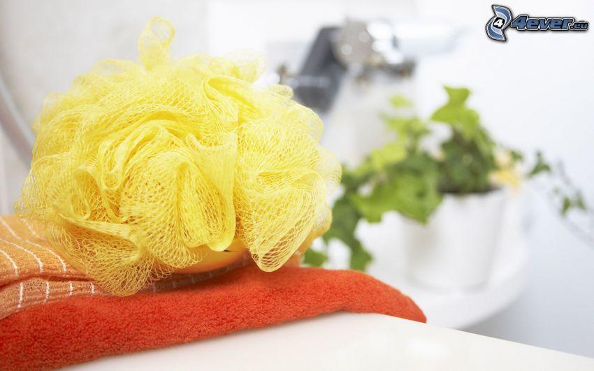 tvättsvamp, handdukar