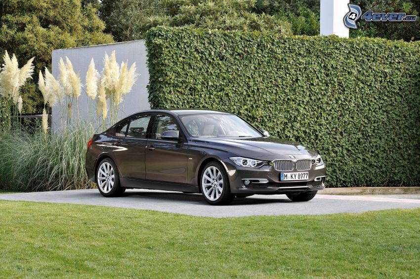 BMW 3 F30, trädgård