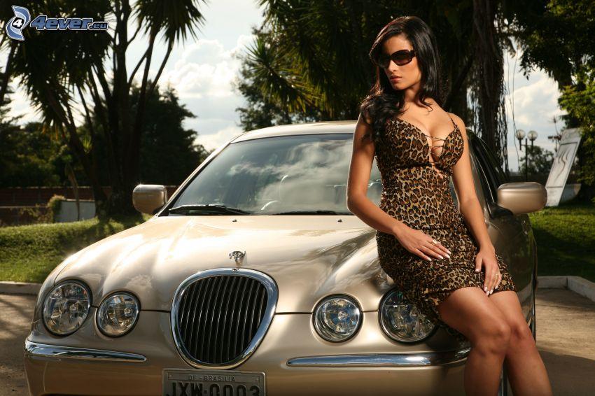 Jaguar, sexig brunett, solglasögon, leopardmönster