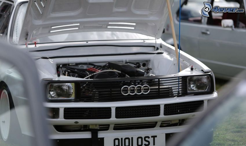 Audi, veteran, motor, frontgaller