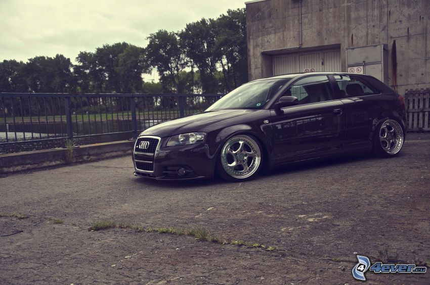 Audi A3, lowrider
