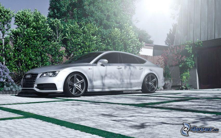 Audi A7, beläggning, träd, sol