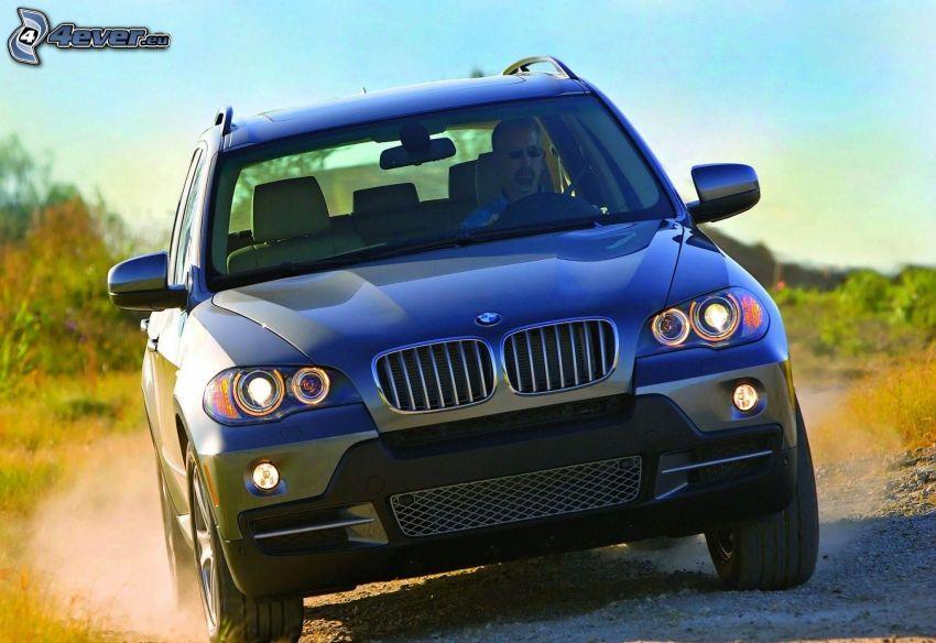 BMW X5, damm