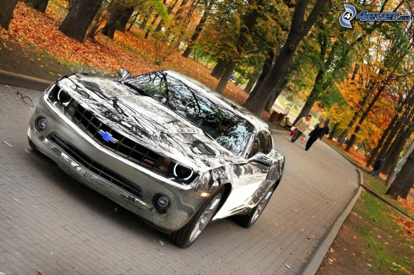 Chevrolet Camaro, krom, park, trottoar, färgglada höstträd