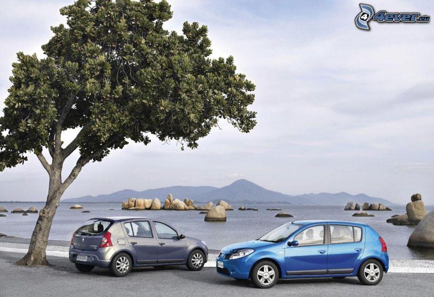 Dacia Sandero Stepway, träd, sjö, stenbumlingar