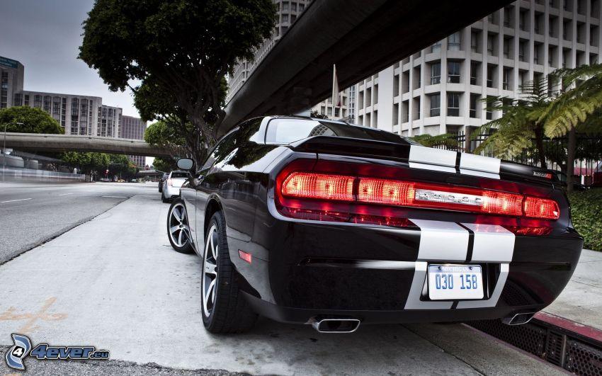 Dodge Challenger, gata, bakljus