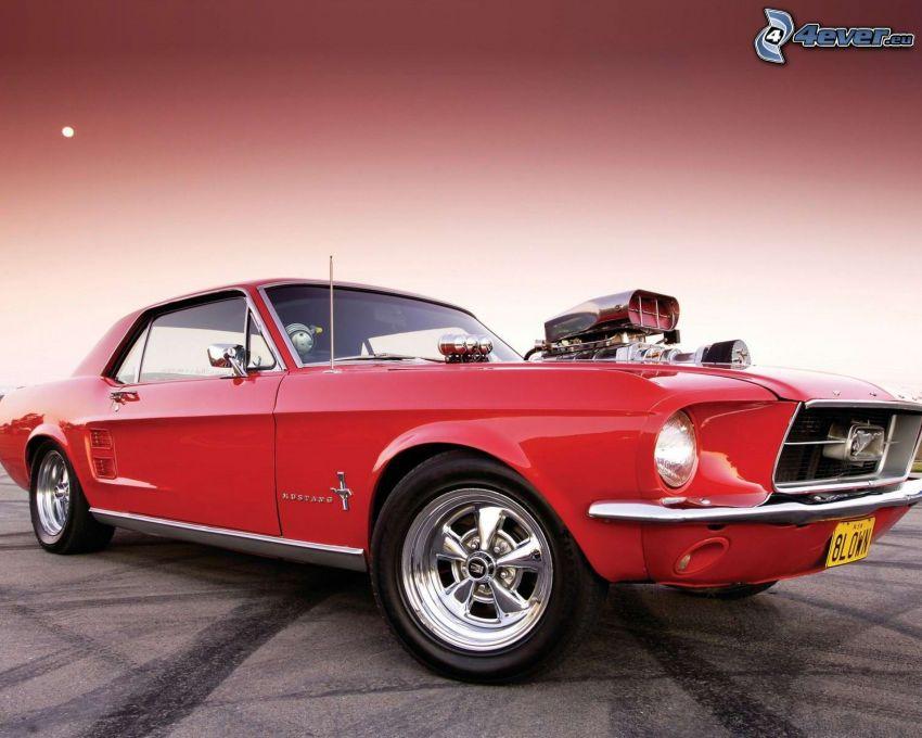 Ford Mustang, veteran, Big Block