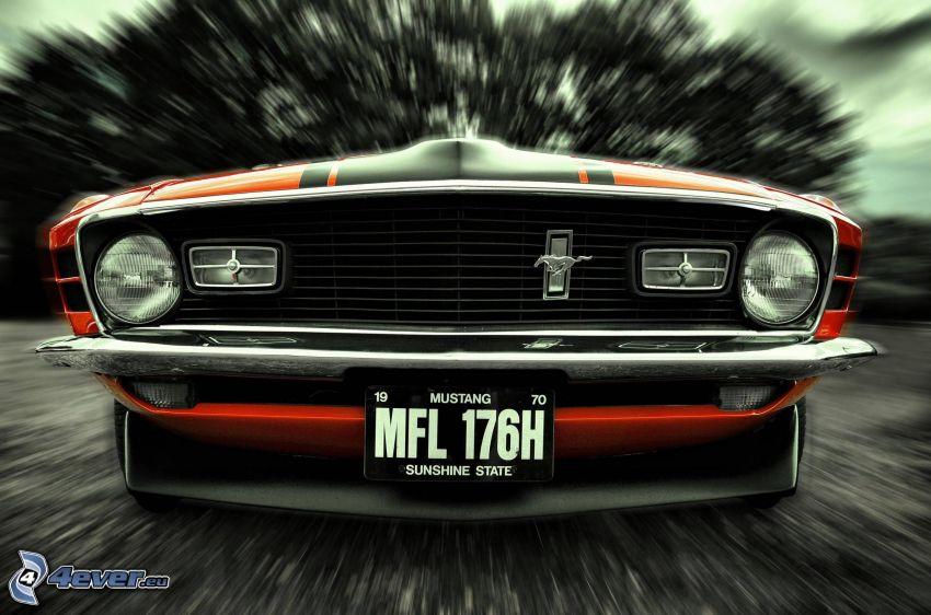 Ford Mustang, veteran, frontgaller