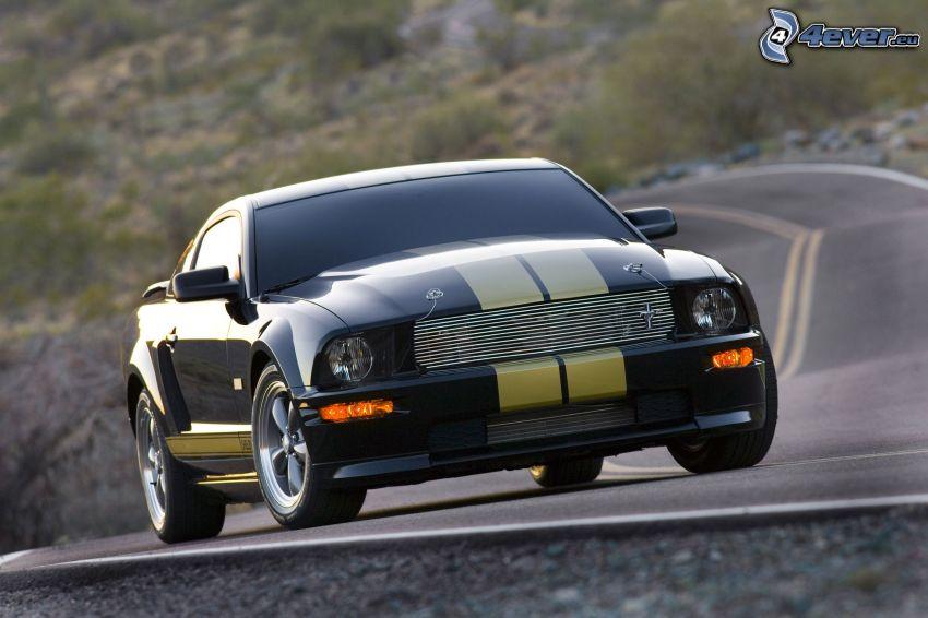 Ford Mustang Shelby, väg