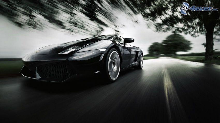 Lamborghini Gallardo, fart, svartvitt foto