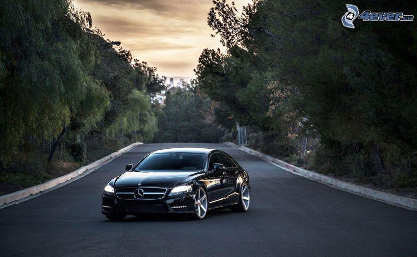 Mercedes-Benz, väg