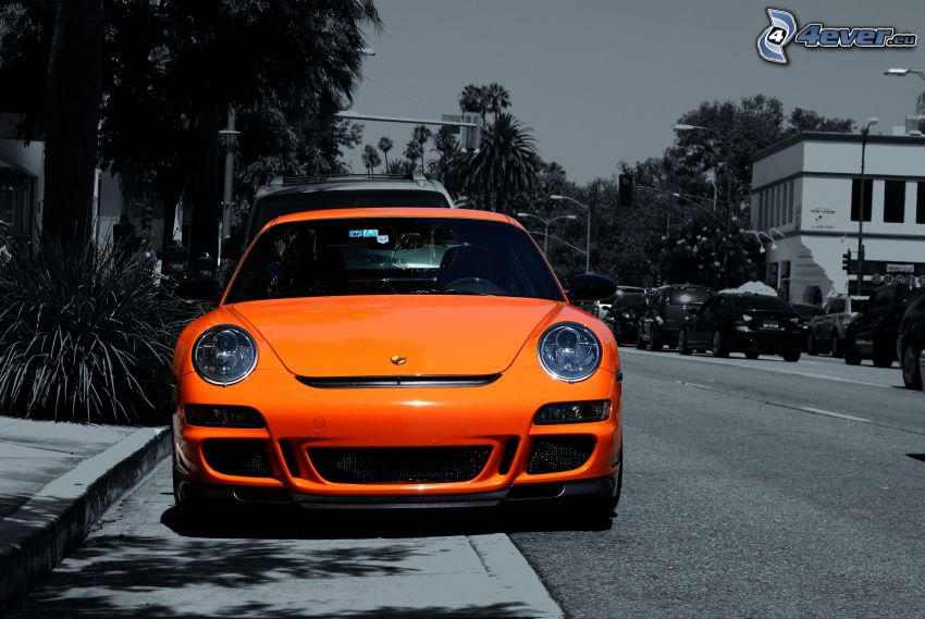 Porsche, gata