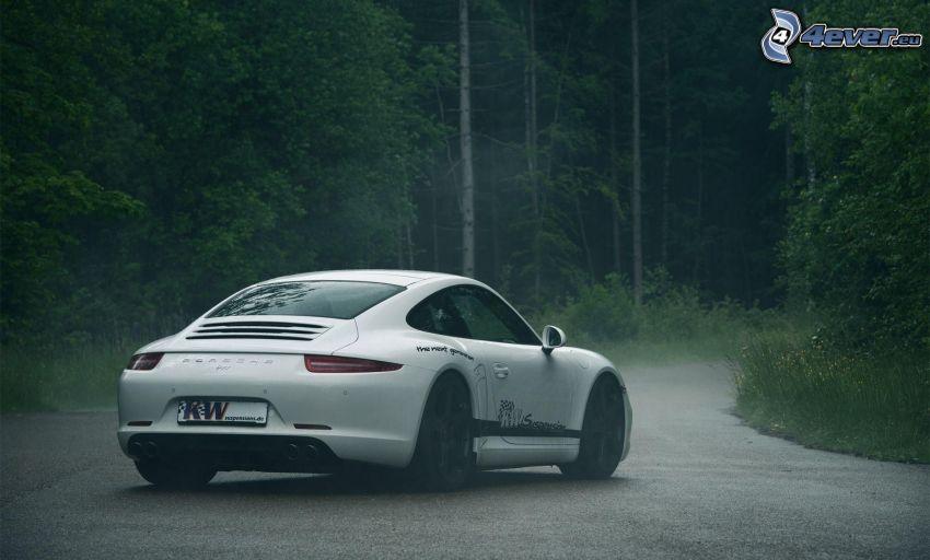 Porsche 911, skogsväg, dimma