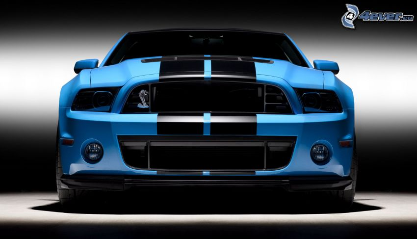 Shelby GT500CR, frontgaller