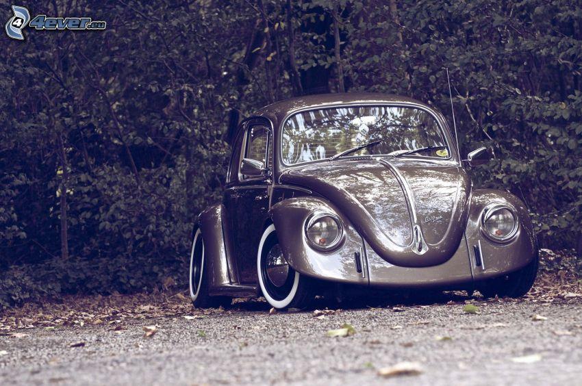 Volkswagen Beetle, veteran, lowrider