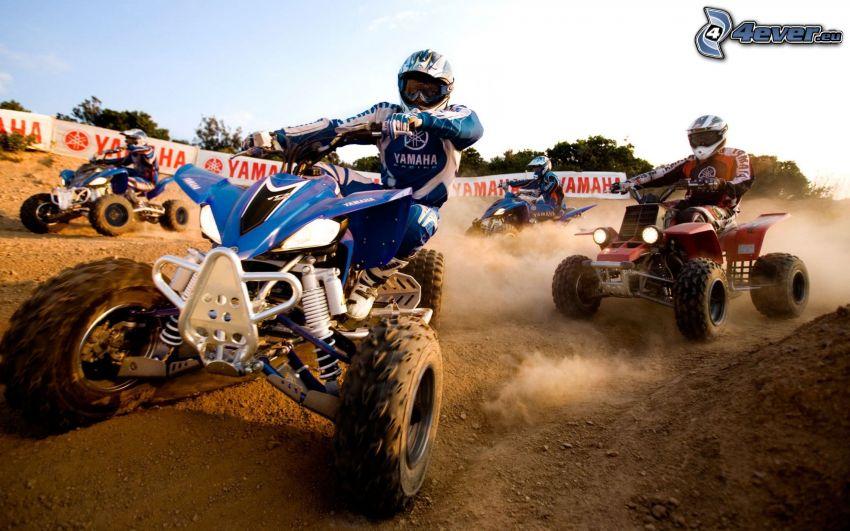 fyrhjulingar, motocross, damm