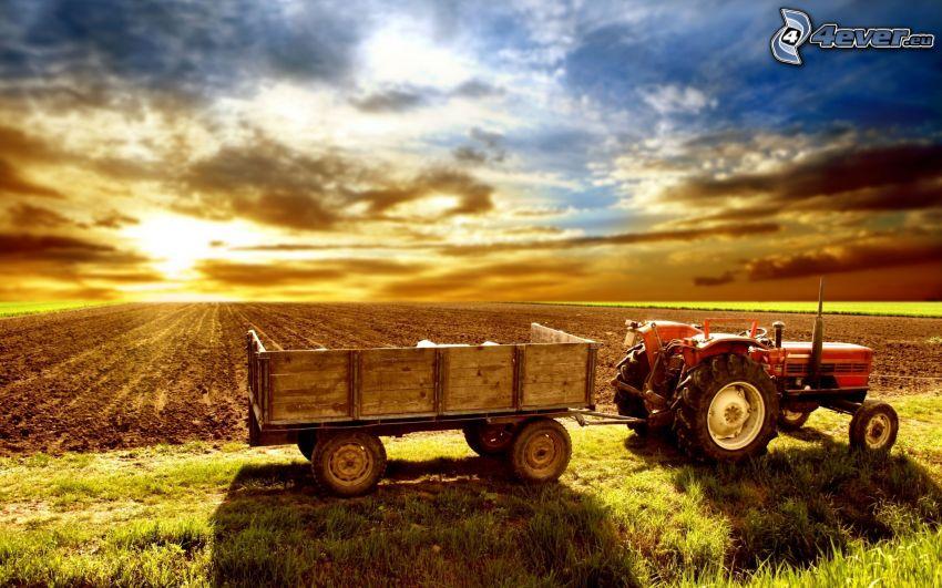 traktor, solnedgång bakom fält, åker