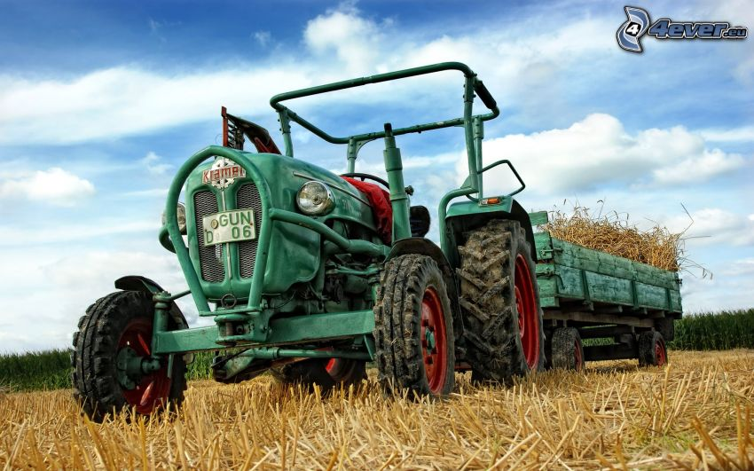 traktor på fält, säd, skörd