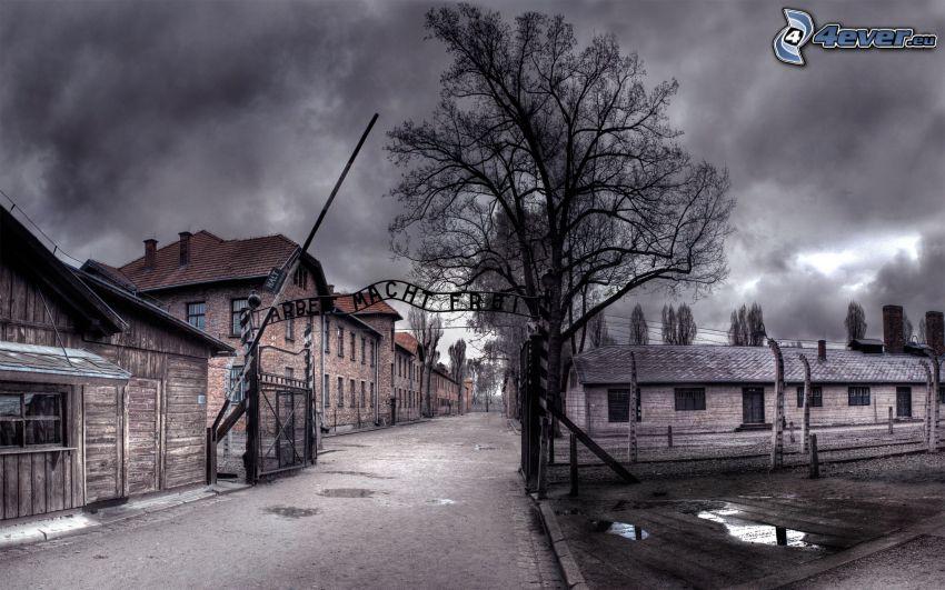Auschwitz, hus, träd