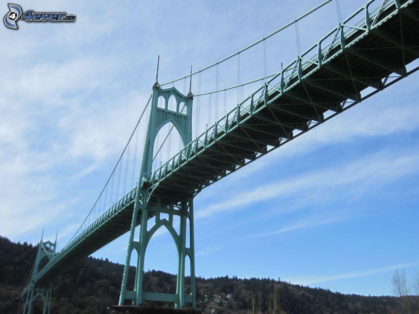 bron St. Johns