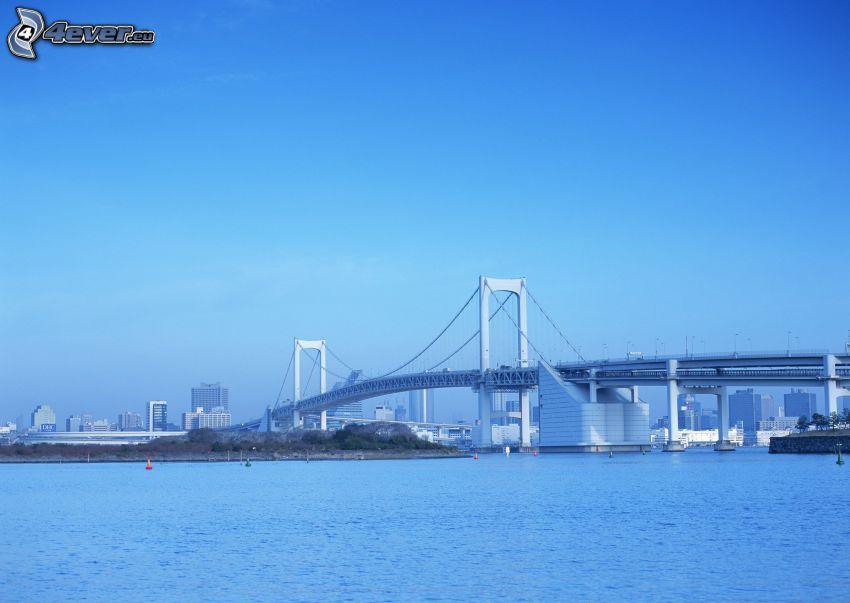 motorvägsbro, Shanghai, hav
