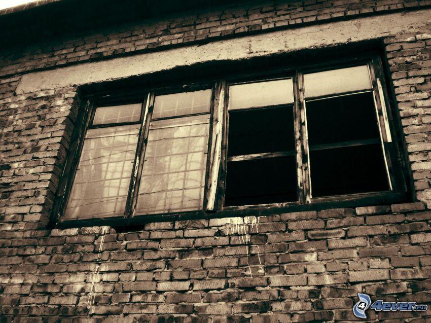 gammalt fönster, tegelvägg