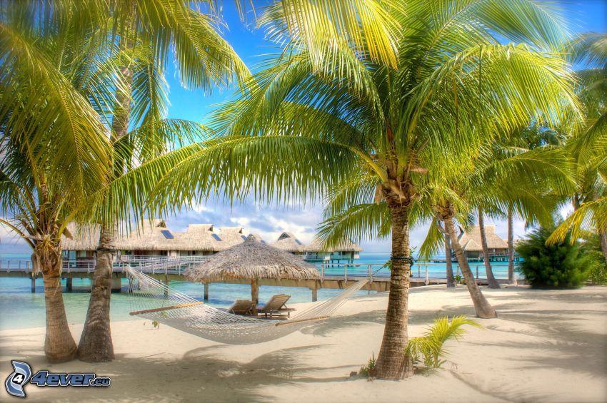 hängmatta, palmer, sandstrand, hus på vattnet, solstolar