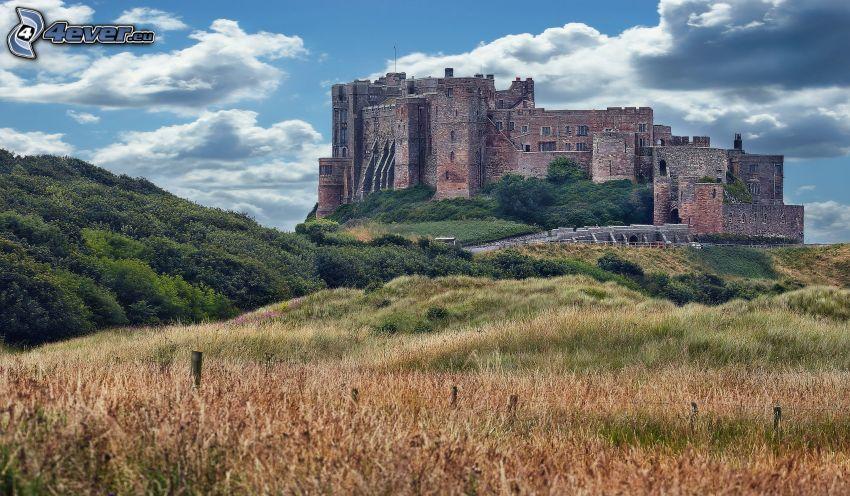 Bamburgh castle, buskar, äng