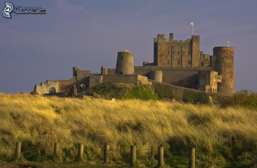 Bamburgh castle, torrt gräs