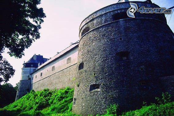 Cerveny Kamen slottet, slott, Slovakien, befästning