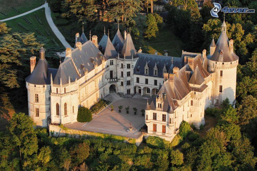 Château de Chaumont, träd
