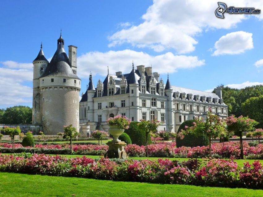 Château de Chenonceau, trädgård, rosa blommor