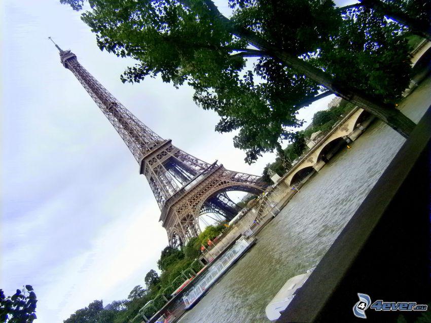 Eiffeltornet, Seine, Paris, Frankrike, träd