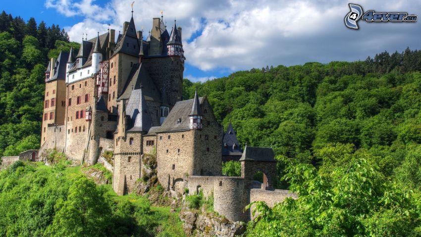 Eltz Castle, grön skog