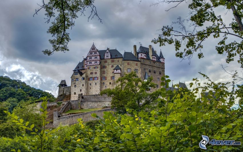 Eltz Castle, grönska