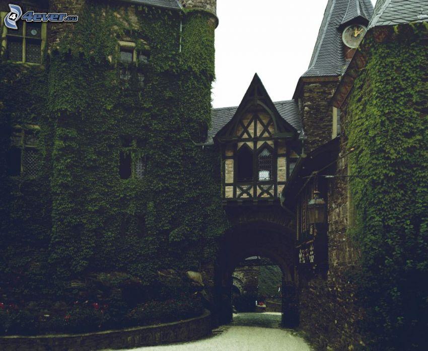 Eltz Castle, murgröna, gränd, torn
