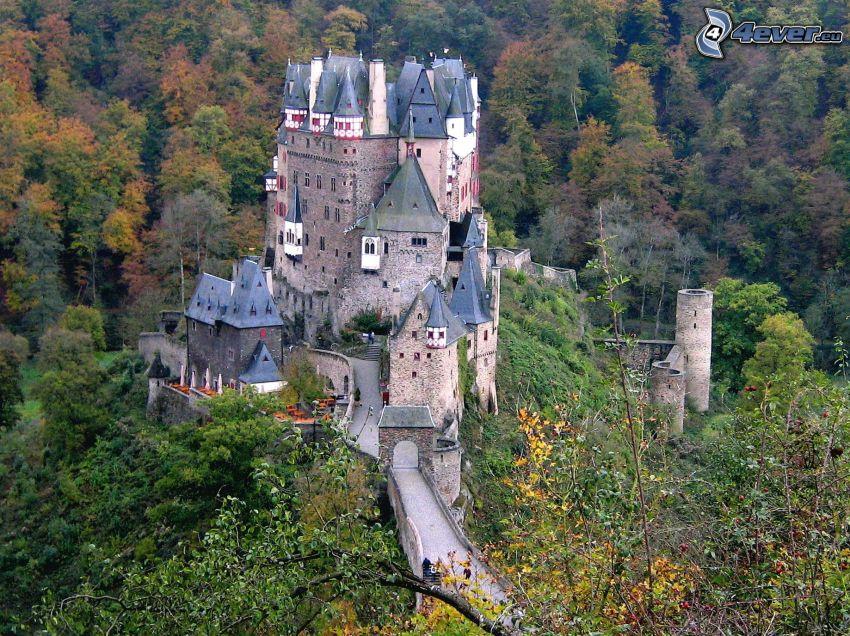 Eltz Castle, skog