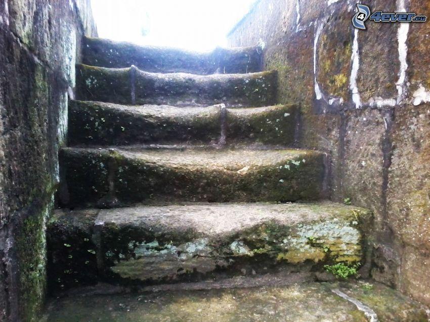historiska trappor, sten