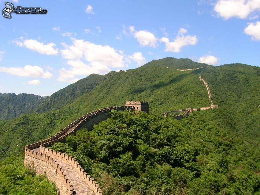 Kinesiska muren, skog