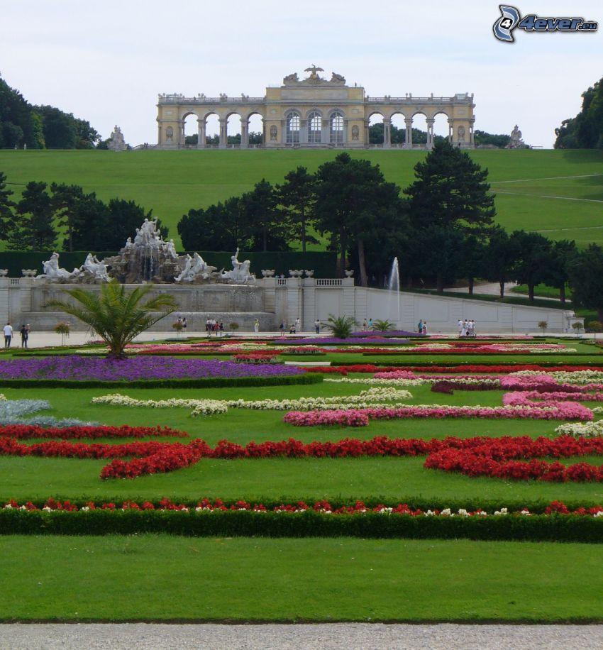 Schönbrunn, Wien, trädgård, gräsmatta, gräs, blommor, byggnad, fontän