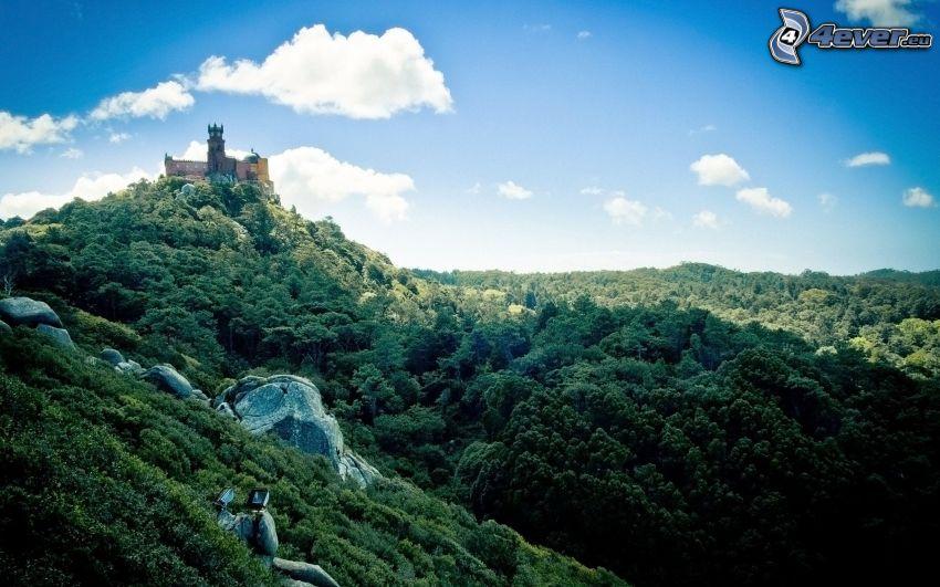 slott, klippor, skog