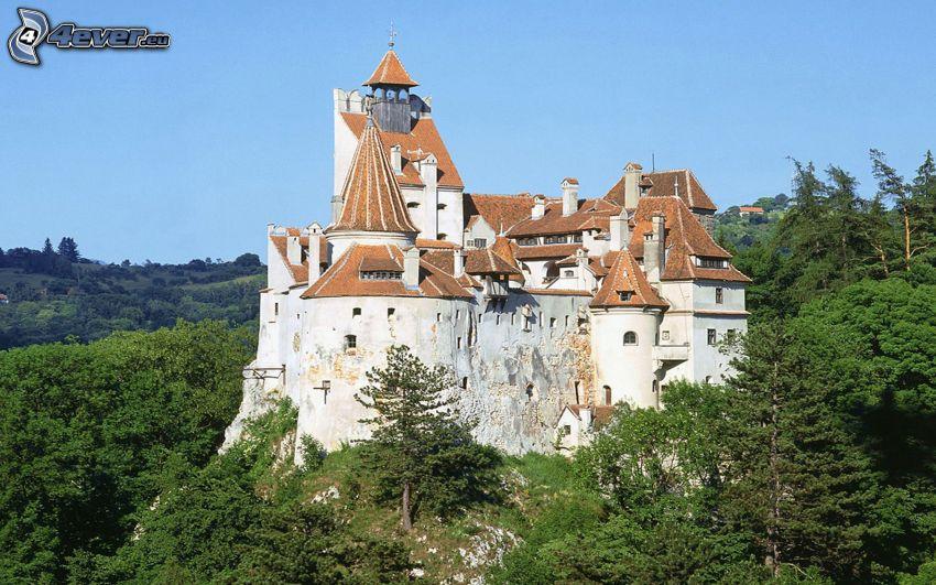 slott, Rumänien, träd