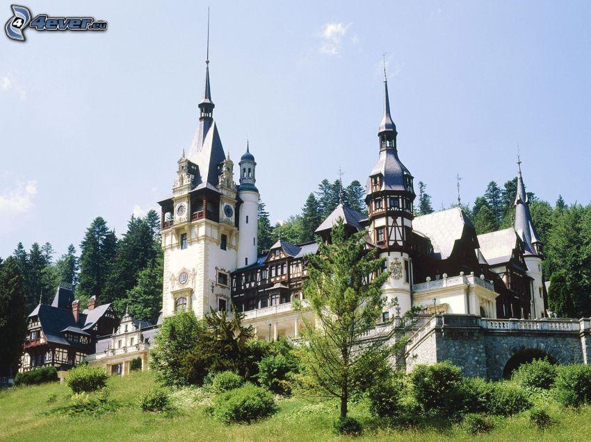 slottet Peles, skog