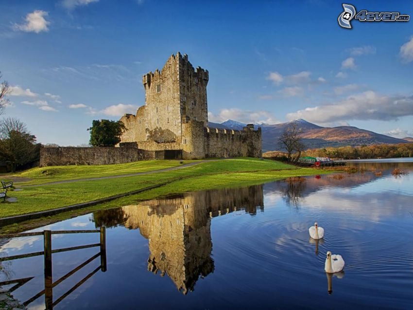 slottet Ross, flod, spegling, svanar