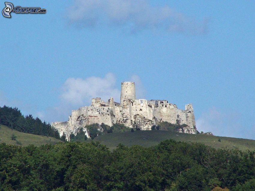 Spiš Castle, Slovakien, skog