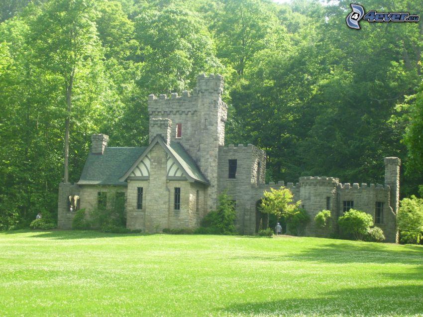 Squire's Castle, skog, gräsmatta