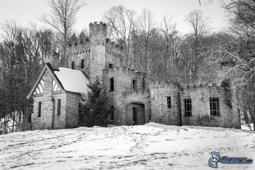 Squire's Castle, skog, snö, svartvitt foto