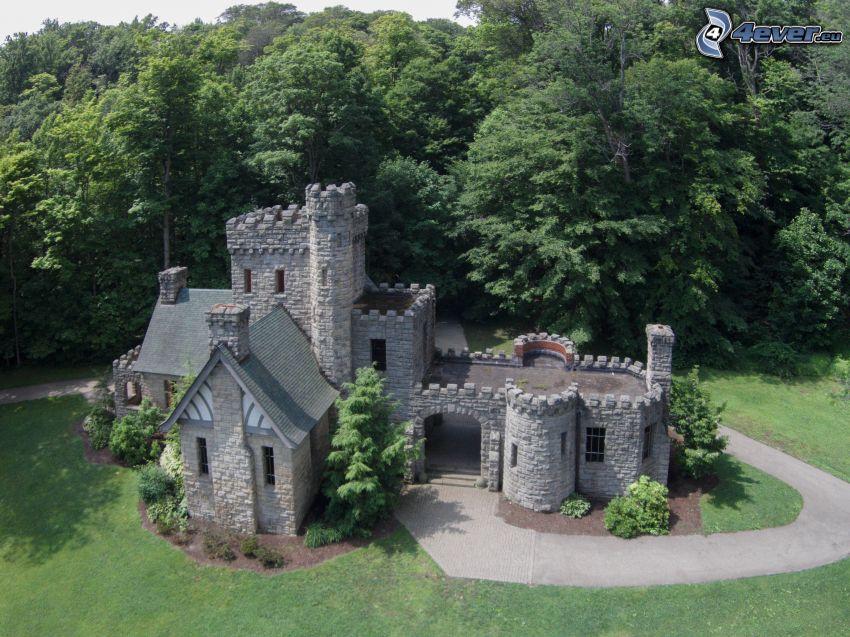 Squire's Castle, skog