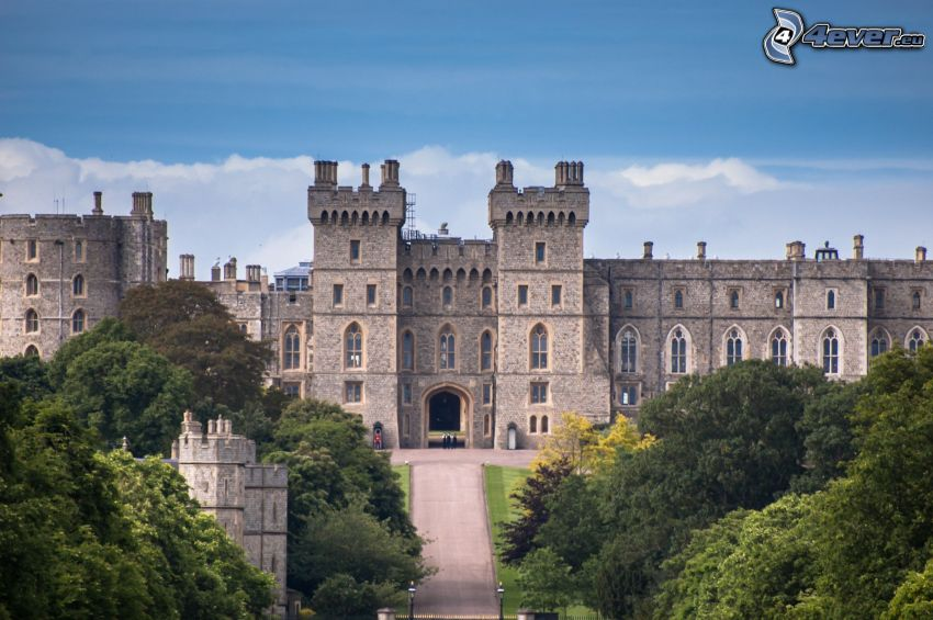 Windsor Castle, träd, park